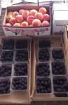 sac fruit